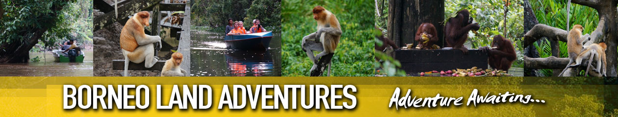 Borneo Land Adventures